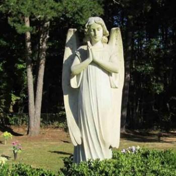 angel-696x364